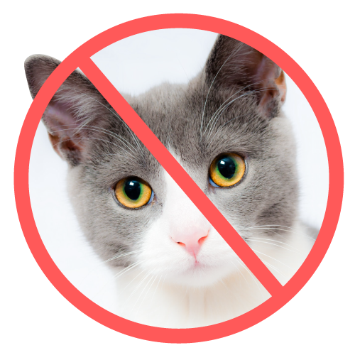 No Cat Zone