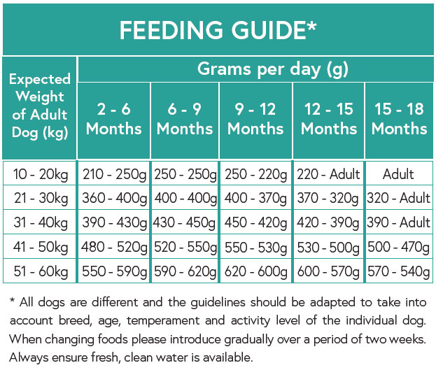 Feeding Guide - Salmon with Sweet Potato and Vegetables for Large Breed Puppies