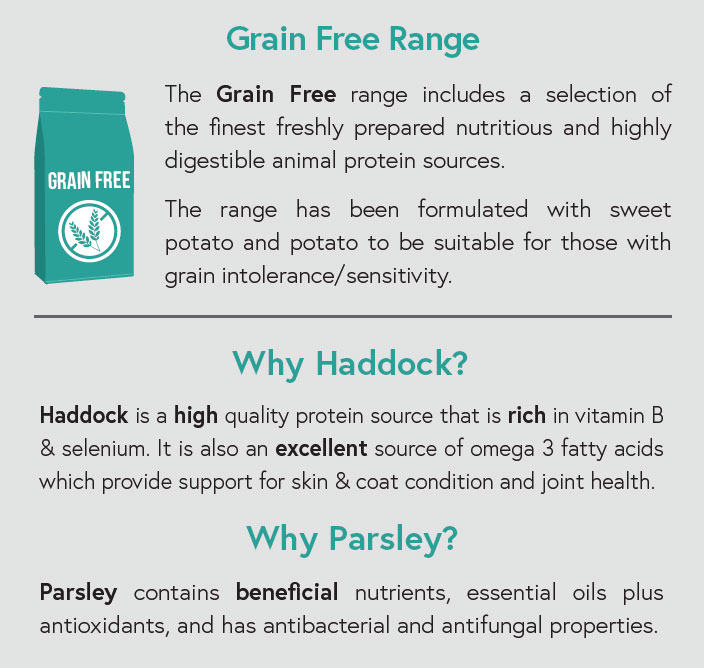 Grain Free - Haddock with Sweet Potato and Parsley for Adult Dogs