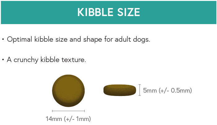 Kibble Size - Haddock with Sweet Potato and Parsley for Adult Dogs