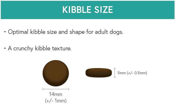 Kibble Size - Turkey with Sweet Potato and Cranberry for Overweight Adult Dogs