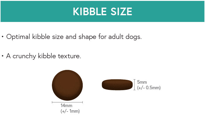 Kibble Size - Venison with Sweet Potato and Mulberry for Adult Dogs